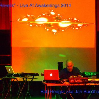 Reveils - Live At Awakenings 2014 cover art
