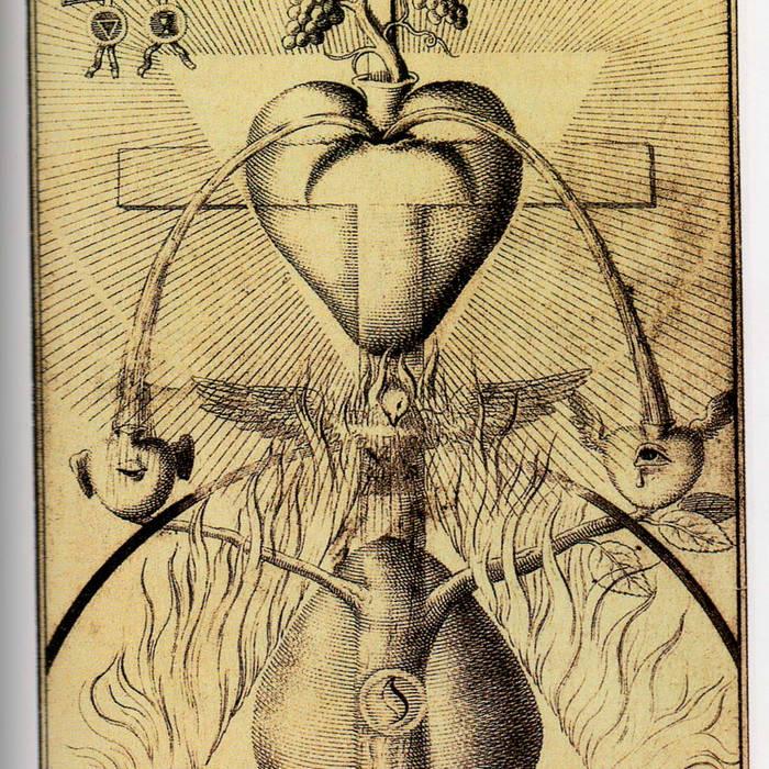 ingirumimusnocteetconsumimurigni cover art