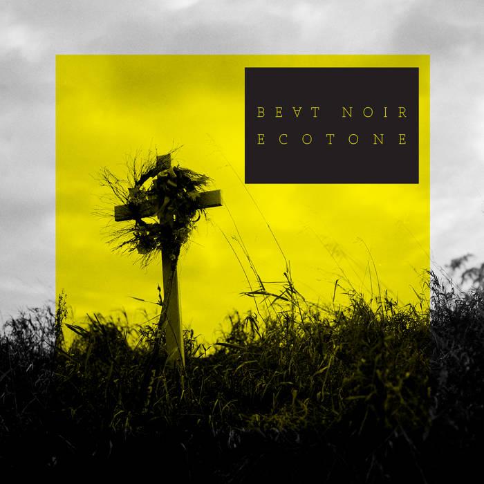 Ecotone cover art