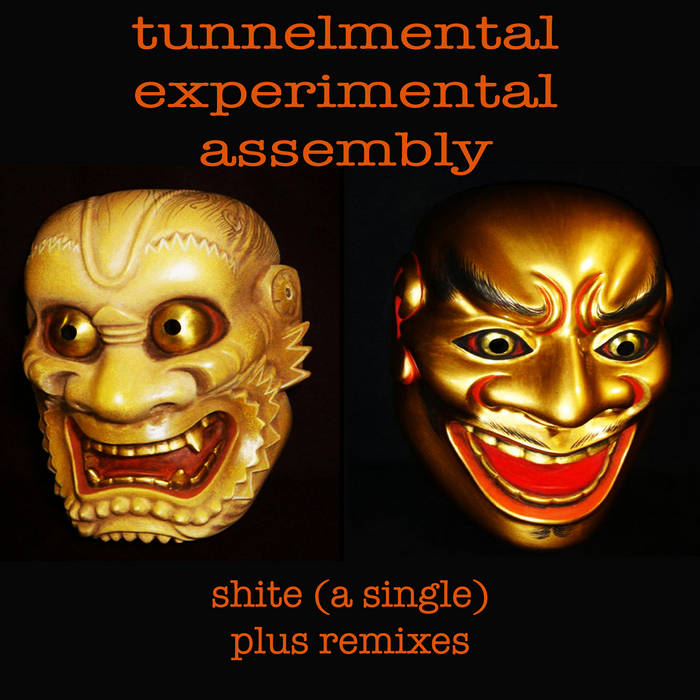shite and the remixes cover art