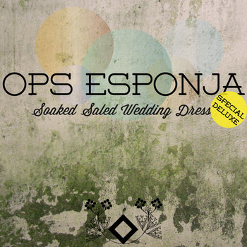 (GFR043) Soaked Saled Wedding Dress (Special Deluxe) cover art