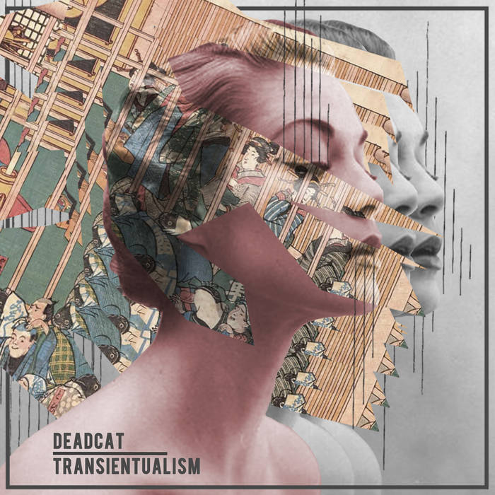 Transientualism cover art