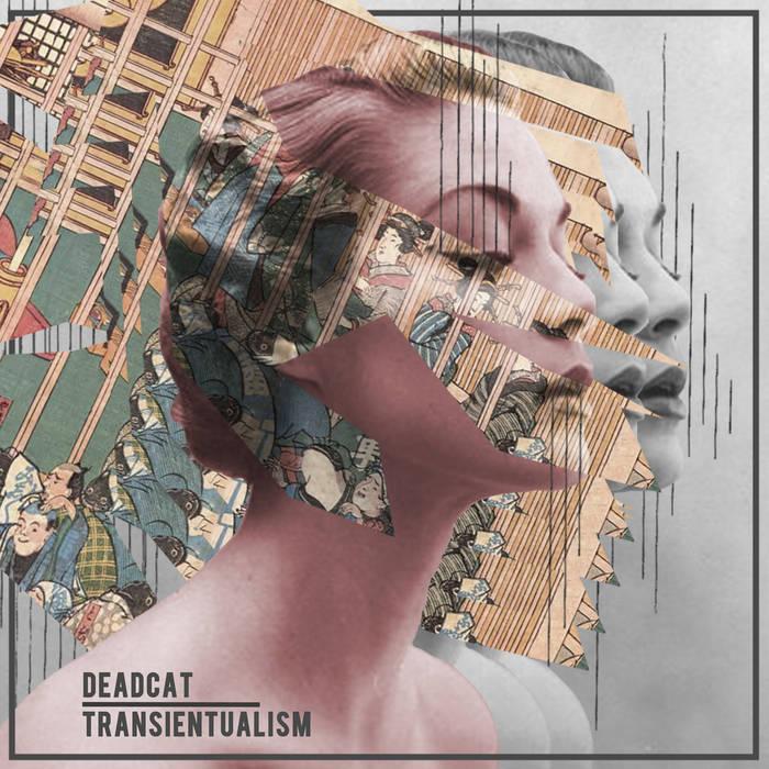 Transientualism cover art