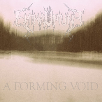 A Forming Void cover art
