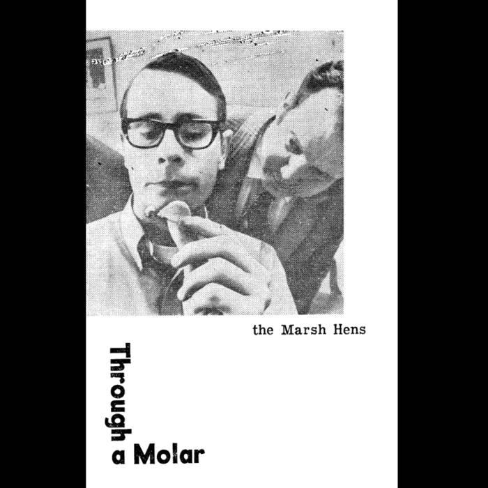 Through a Molar cover art