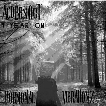 [HVZ022] Acdbrnout - 1 Year On EP cover art
