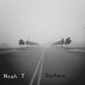 Surface cover art