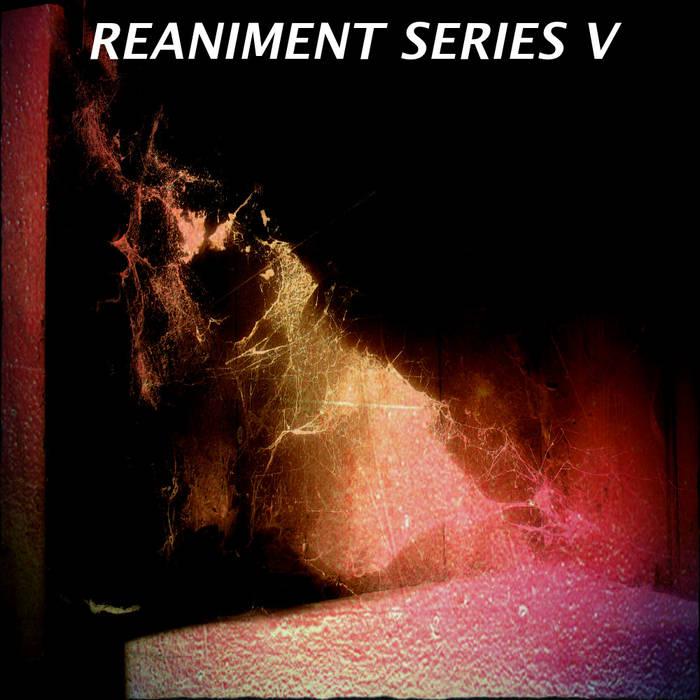 Reaniment Series V cover art