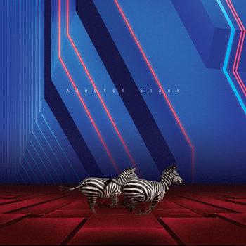 This is the Second Album of a band called Adebisi Shank cover art
