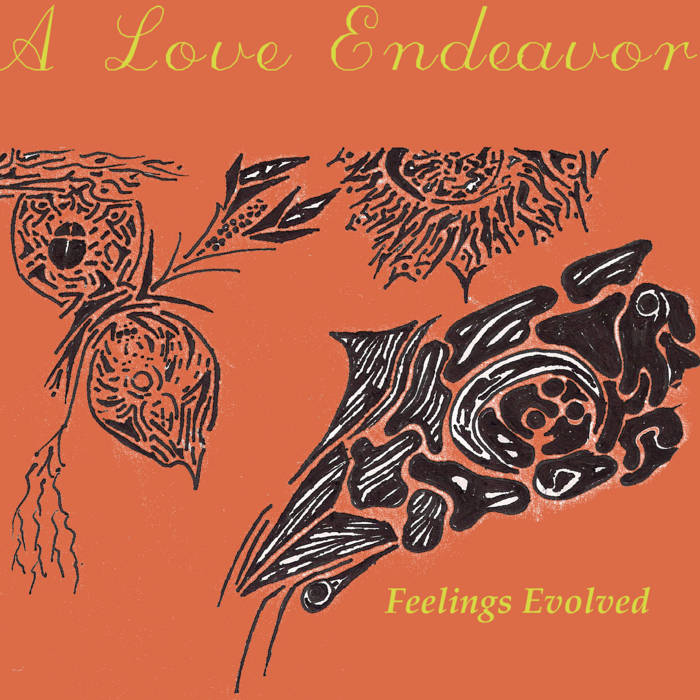 Feelings Evolved cover art