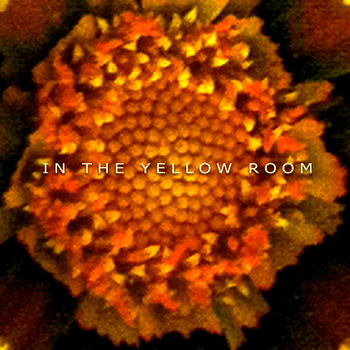 In the Yellow Room cover art