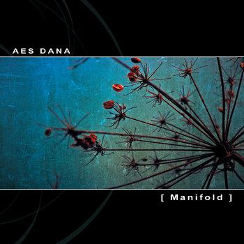[ Manifold ] cover art