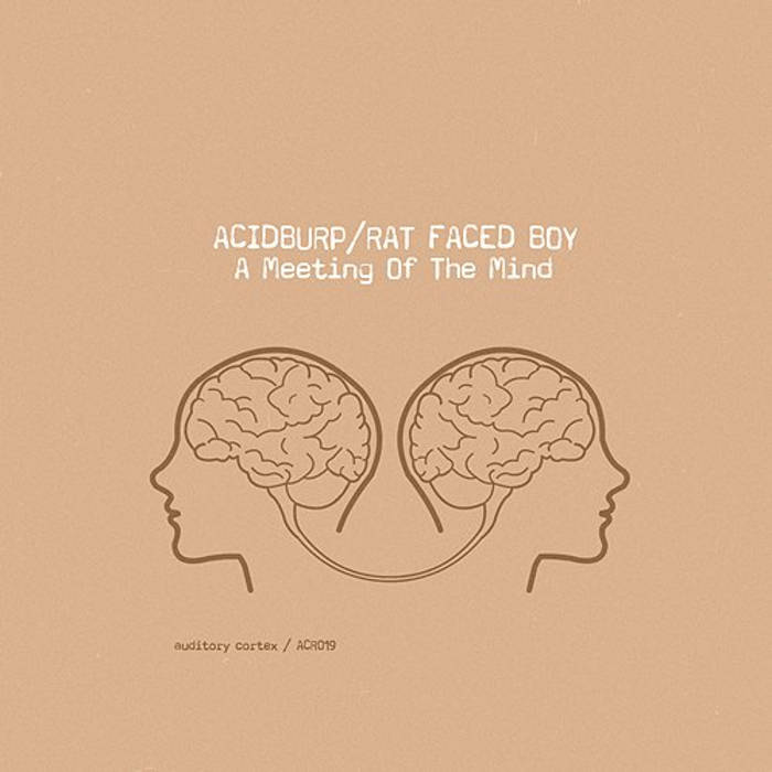 Acidburp & Rat Faced Boy - A Meeting of the Mind cover art