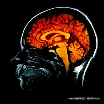 Hybrid Brain (Single) cover art