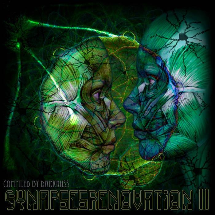 VA - Synapses Renovation 2 cover art