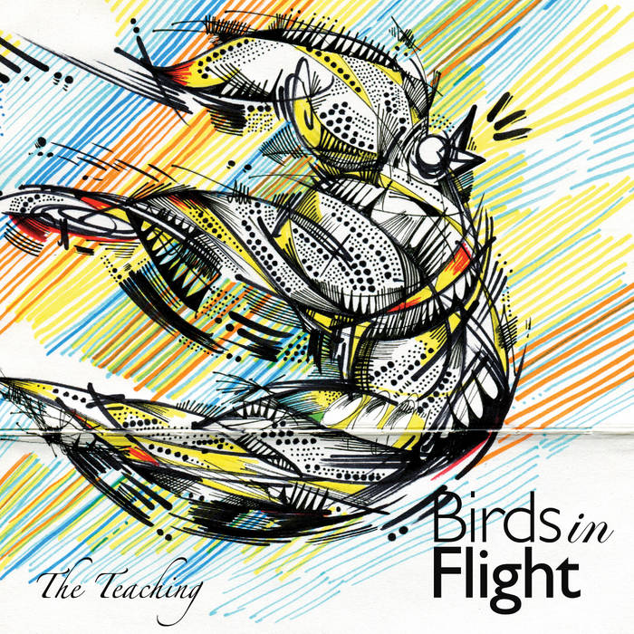 Birds in Flight cover art