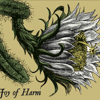 Joy of Harm cover art