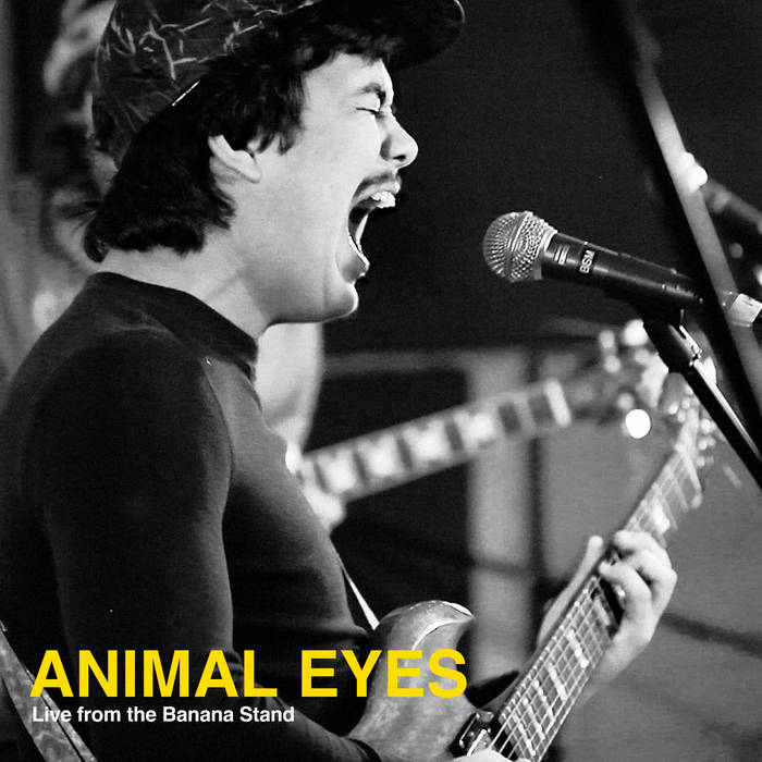 Animal Eyes - Live from the Banana Stand cover art