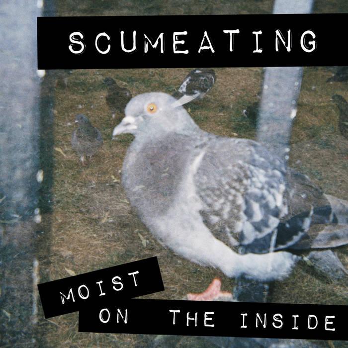 Moist on the Inside cover art