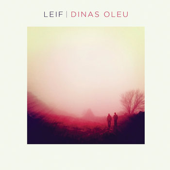 Dinas Oleu cover art