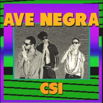 CSI cover art
