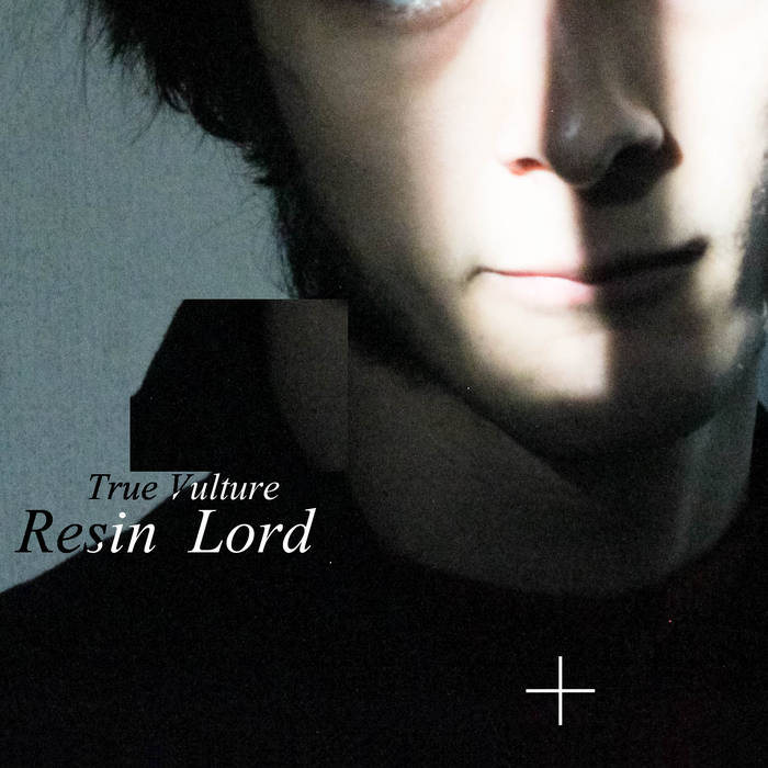 Resin Lord cover art