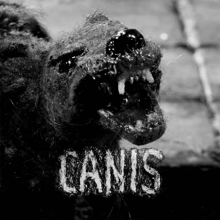 Canis cover art