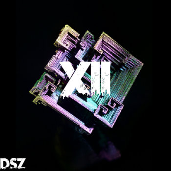 DSZ Beat Tape Vol. 12 cover art