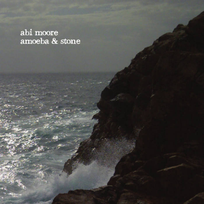 Amoeba & Stone cover art