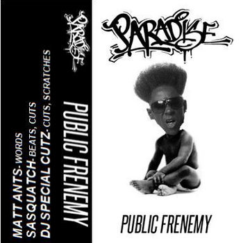 Public Frenemy cover art