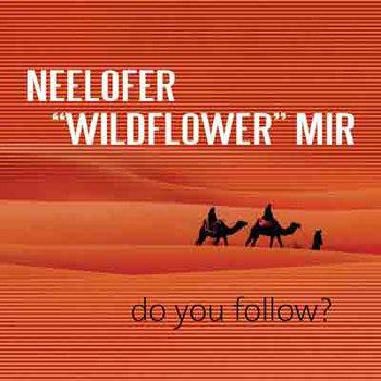 Do You Follow ? cover art