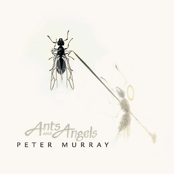 Ants and Angels cover art