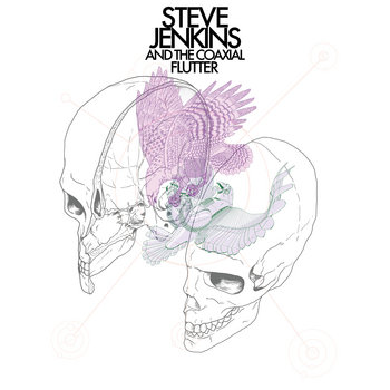 Steve Jenkins And The Coaxial Flutter cover art