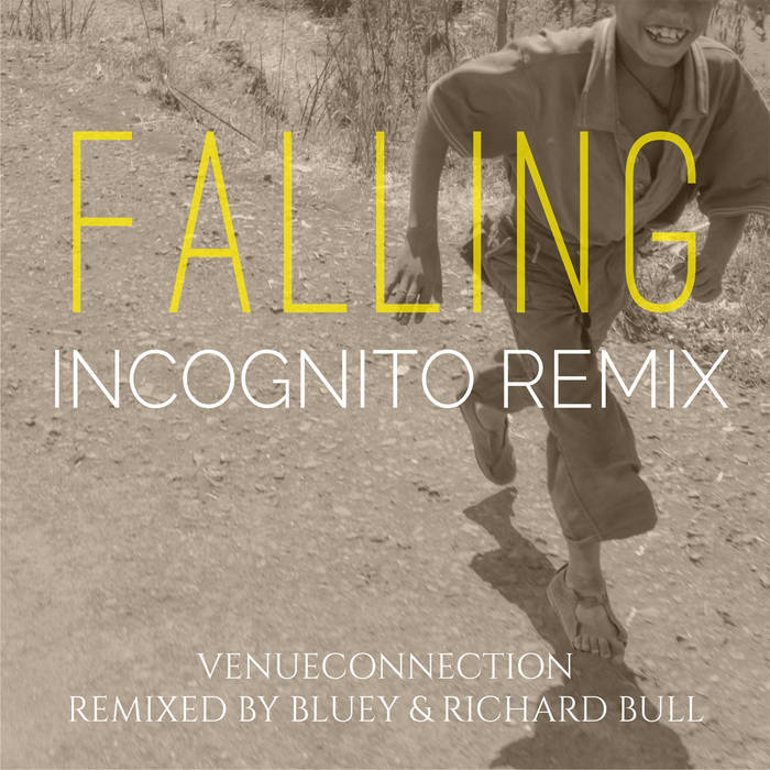 Falling (Incognito Remix) cover art