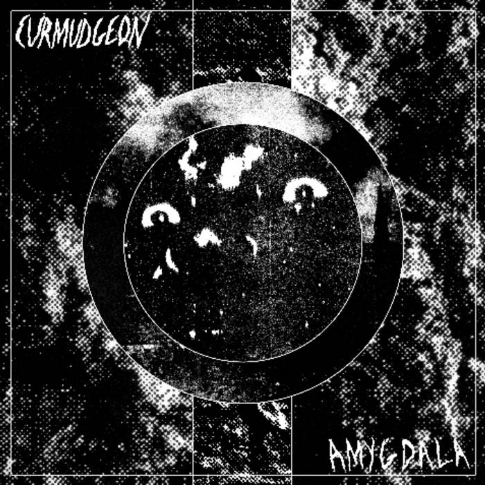 Amygdala cover art