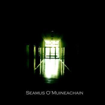 Seamus O'Muineachain - My Negative cover art