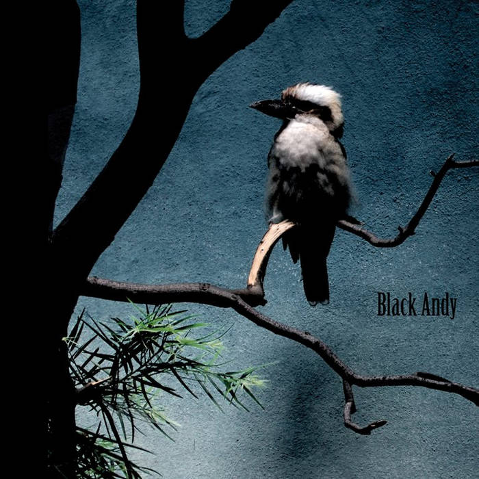 Black Andy cover art