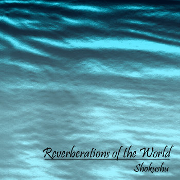 Reverberations of the World cover art