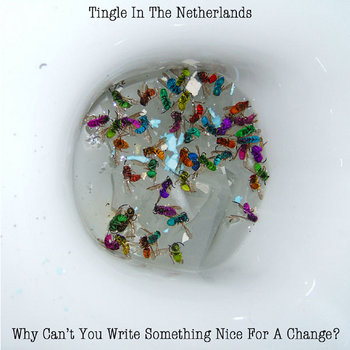 Why Can't You Write Something Nice For A Change? cover art
