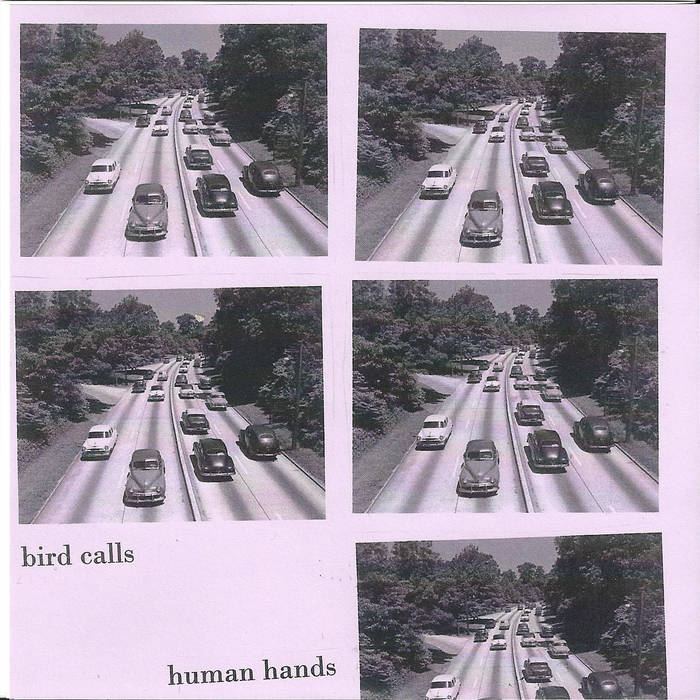 "bird calls / human hands split 7"" cover art"