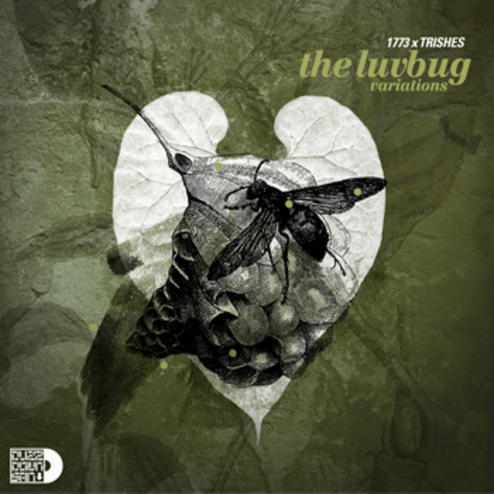 The Luv Bug Variations cover art