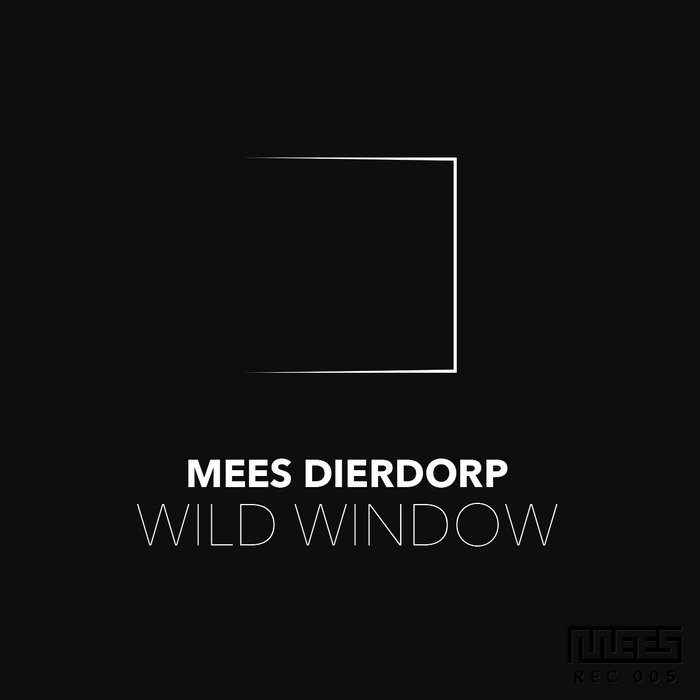 Wild Window cover art