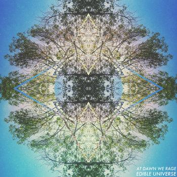 Edible Universe cover art