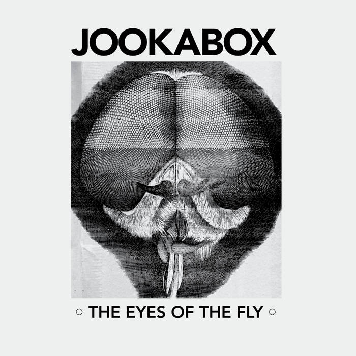 The Eyes of the Fly cover art
