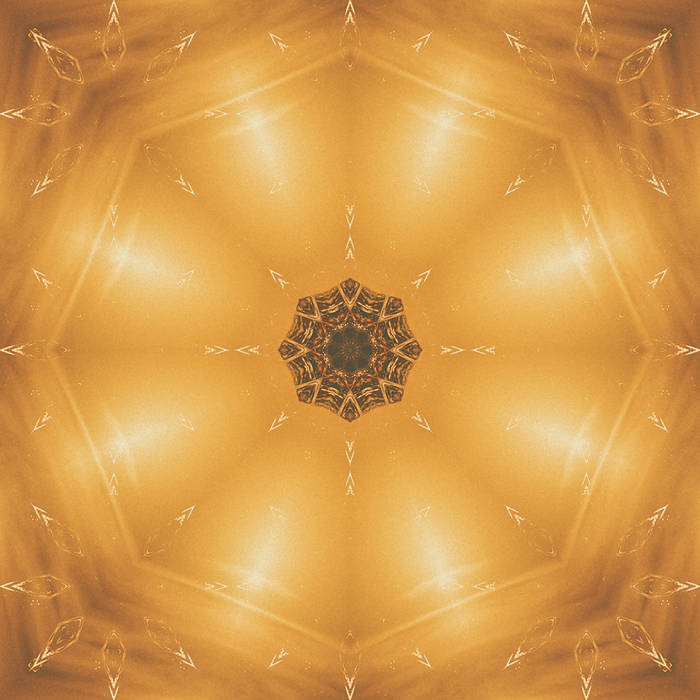 Tiger Flower Circle Sun - Remixes cover art