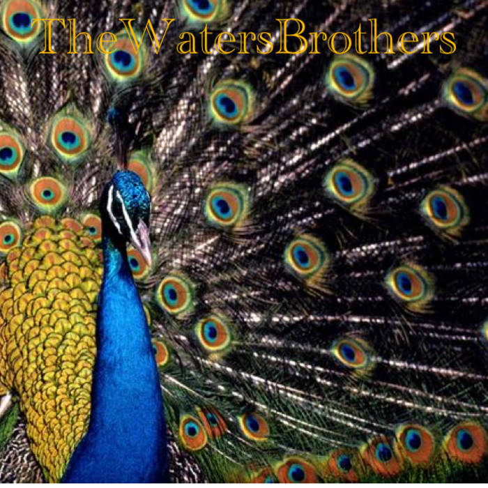 The Waters Brothers cover art