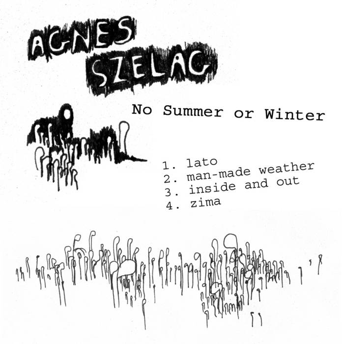 No Summer Or Winter cover art