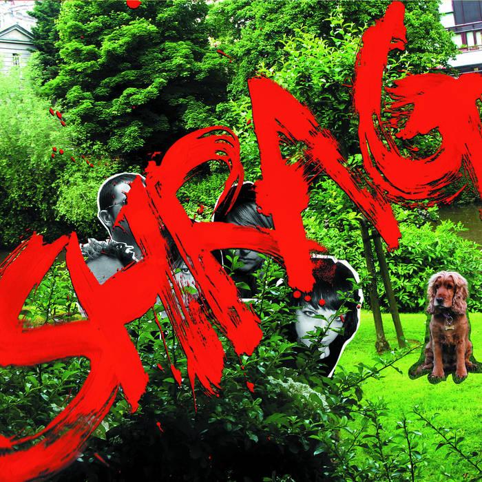 Shrag cover art