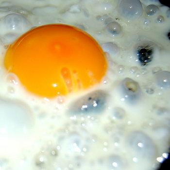 Egg Fry #2 cover art