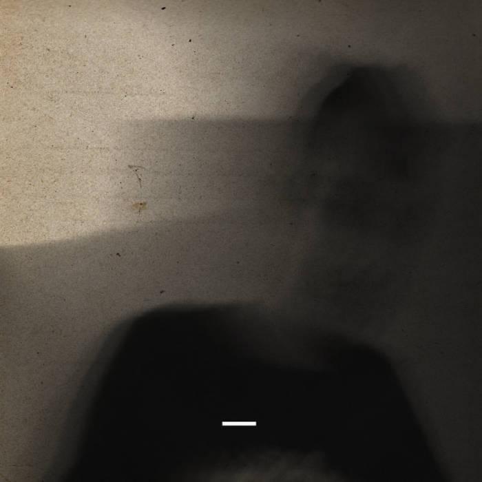 _ cover art